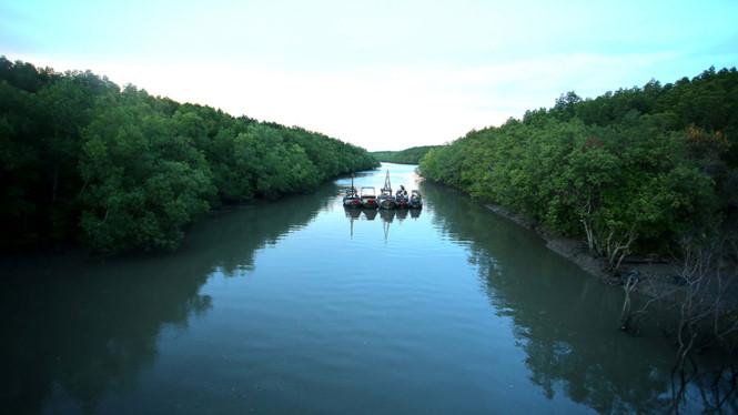 Ra mắt Tour du lịch sinh thái 1 ngày tại Cần Giờ
