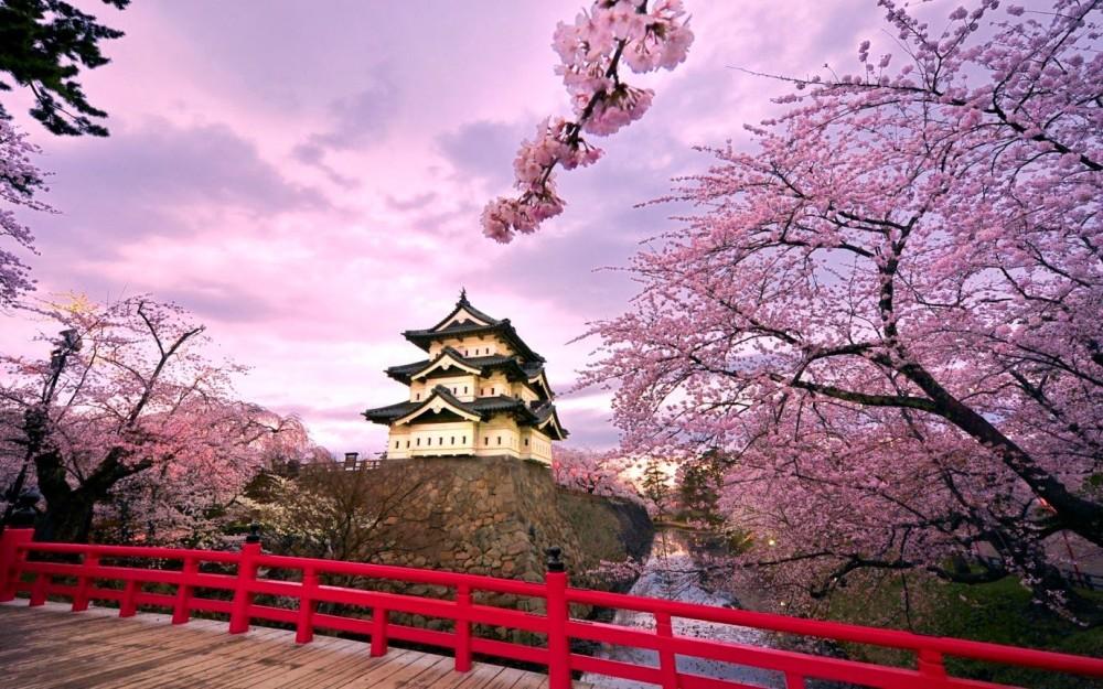 Vé máy bay giá rẻ đến Nhật sẽ chỉ còn từ 1,5 triệu đồng