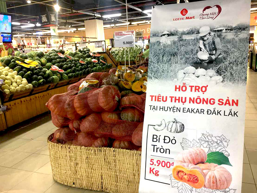 LOTTE Mart hỗ trợ tiêu thụ dưa hấu, bí đỏ giúp bà con nông dân vượt qua khó khăn