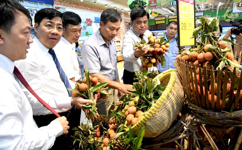 Hệ thống bán lẻ Saigon Co.op rầm rộ nhập hơn 400 tấn vải thiều VietGAP