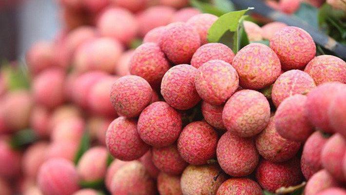 Người Sài Gòn mê mẩn những loại trái cây miền Bắc