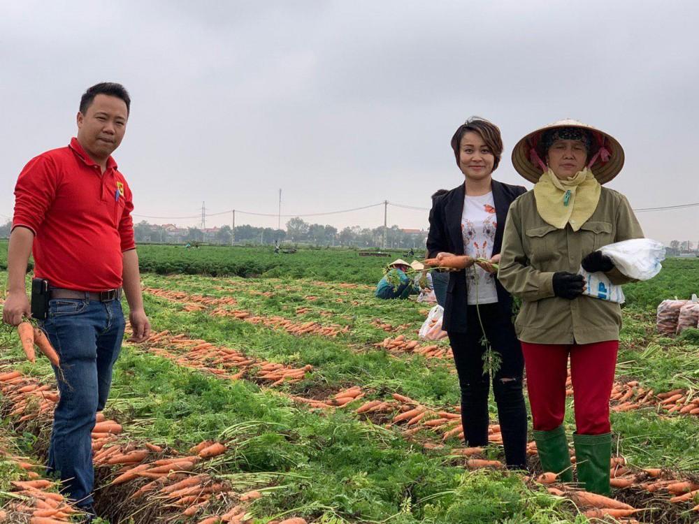 Sau Tết, Big C và Central Group Việt Nam mở rộng tiêu thụ Cà Rốt Hải Dương ra toàn quốc