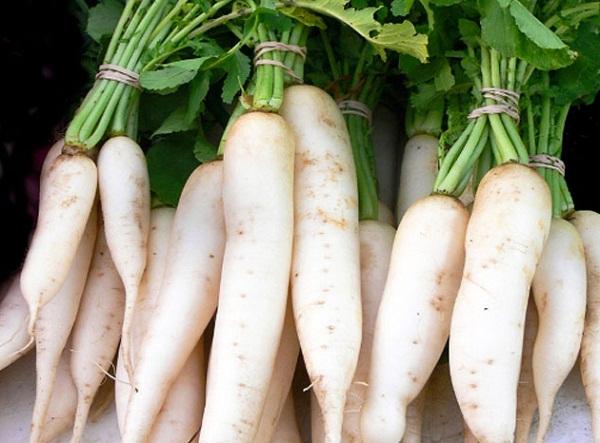 Củ cải: loại nhân sâm dễ tìm, dễ mua