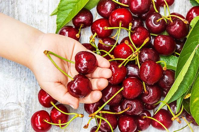 Cherry, trái cây ngoại giá rẻ bất ngờ