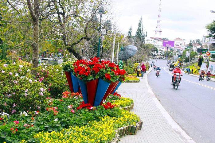 Festival Hoa Đà Lạt 2019 : Sẽ rực rỡ những ngày hoa