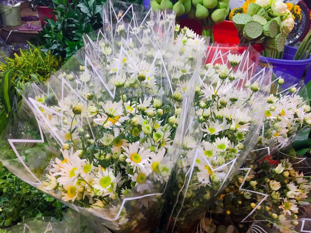 Hoa cúc họa mi về Sài Gòn đắt khách