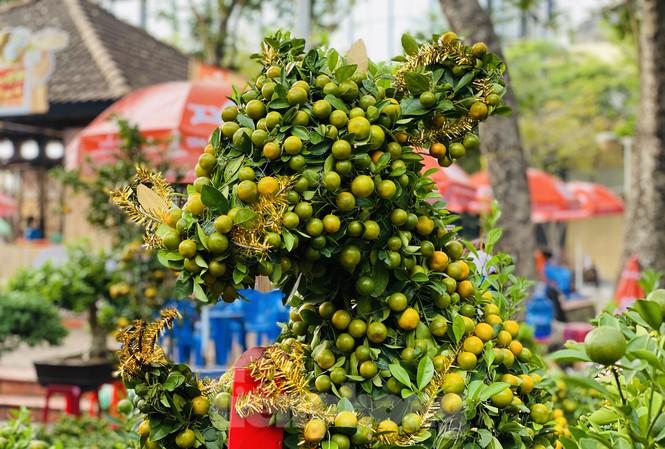 Quất cảnh hình chuột đắt hàng tại chợ hoa Tết ở Sài Gòn