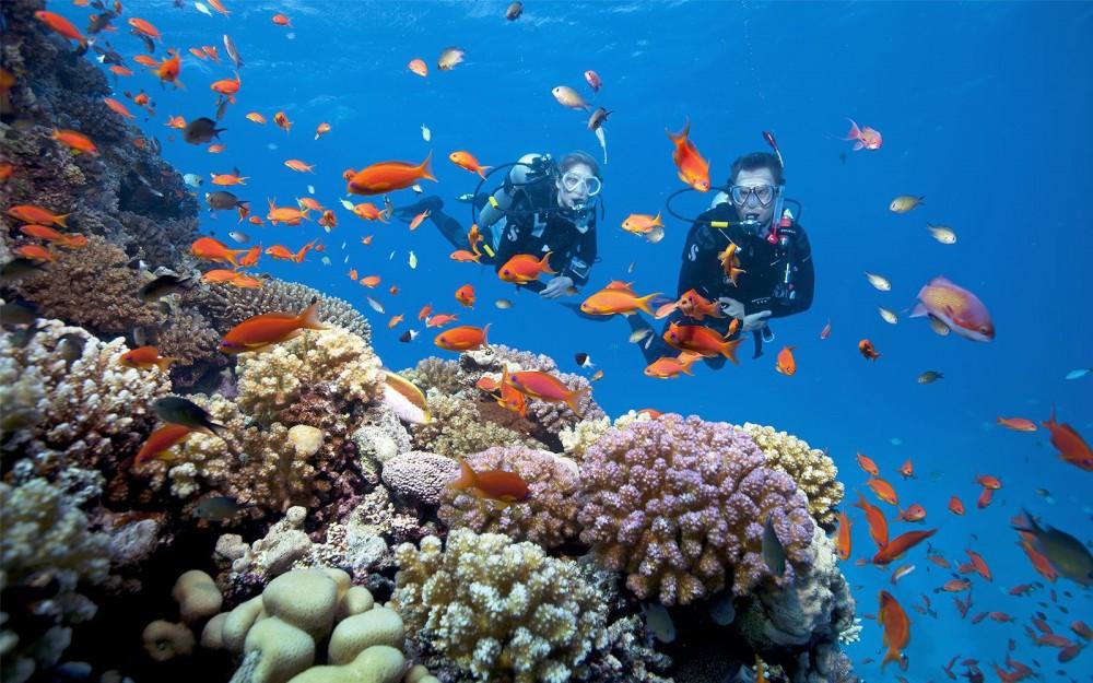 Các doanh nghiệp du lịch, lưu trú & lữ hành Nha Trang giảm giá từ 20% đến 50% để kích cầu du lịch