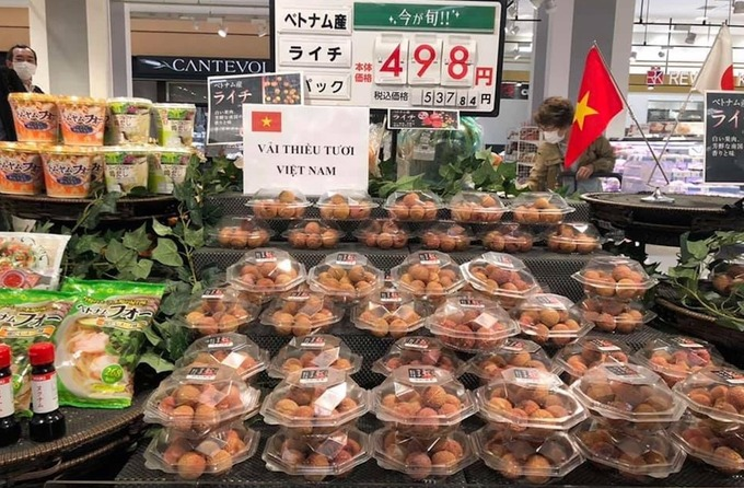 Hành trình đưa vải thiều Việt Nam vào thị trường Nhật Bản
