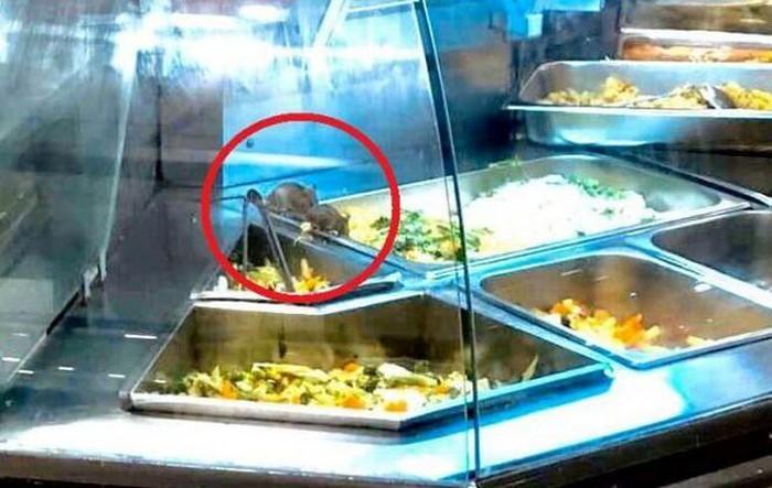 Aeon Mall trả lời ViVuMuaSắm vụ chuột bò tại quầy thức ăn nấu sẵn