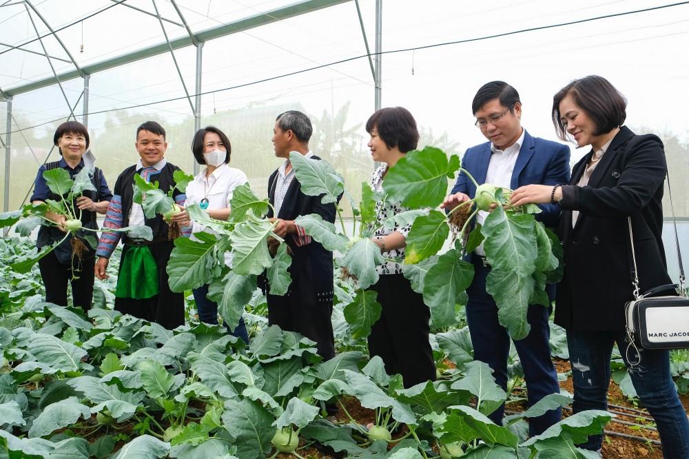 Nông dân Vân Hồ đổi đời nhờ tham gia chương trình Sinh kế cộng đồng do Central Retail thực hiện