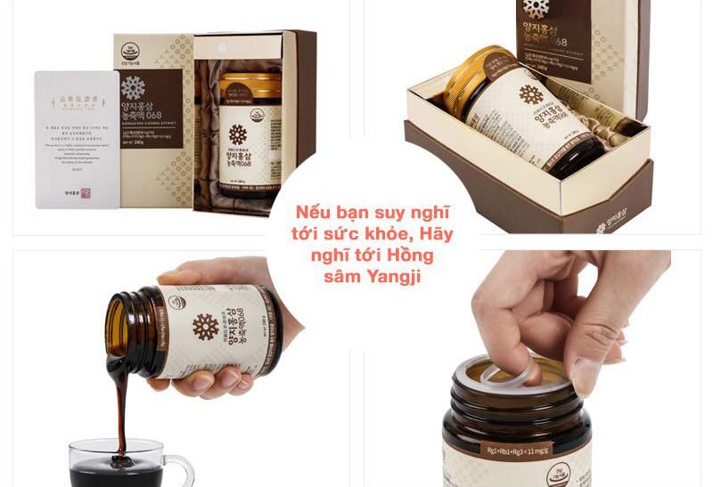 Cao Hồng sâm nguyên chất cao cấp Yangji 068 và những công dụng tuyệt vời bạn cần biết