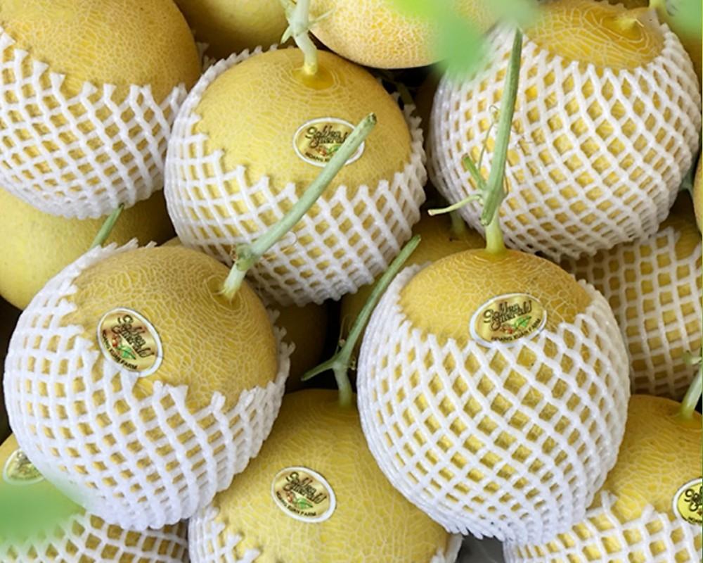 Bổ sung trái cây, hải sản vào combo nông sản 10 kg/túi giá từ 100.000 đồng ở TP.HCM